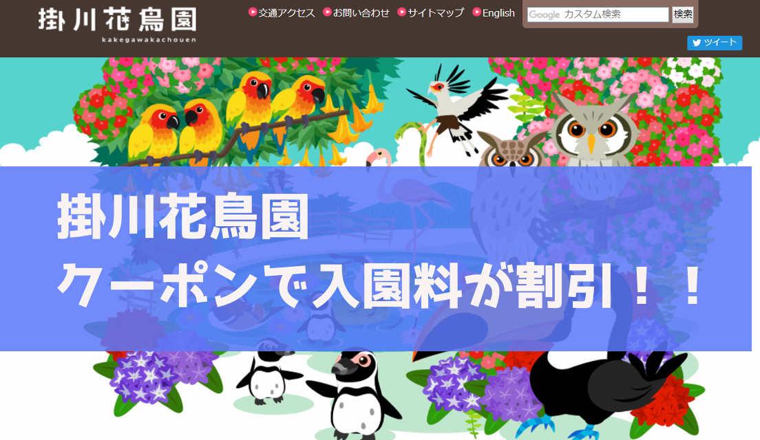 掛川花鳥園の入園料がクーポンで割引に