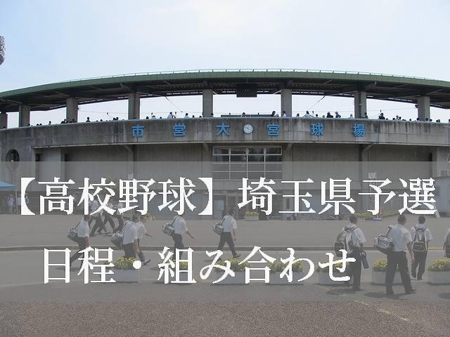 2019高校野球埼玉県予選